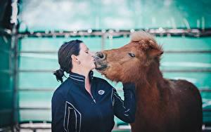 Картинка Лошади 2 Брюнетки Поцелуи животное Девушки