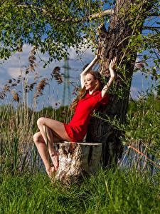 Картинки Пень Сидящие Платье Ног Anastasia молодая женщина