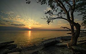 Картинки Канада Рассветы и закаты Берег Камни Залив Деревья Ontario Природа