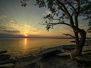 Картинки Канада Рассветы и закаты Берег Камни Залив Деревья Ontario