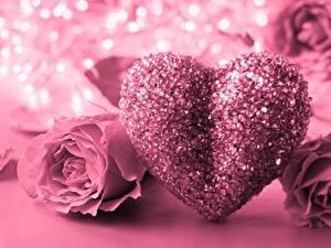 Фото День всех влюблённых Роза Розовый Сердечко
