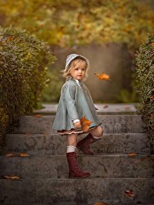 Картинка Осенние Девочка Лестницы Листья Размытый фон Дети