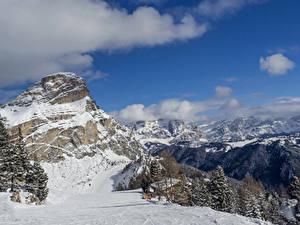 Обои Италия Гора Зимние Альпы Снега Ель Alta Badia Природа