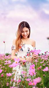 Обои для рабочего стола Азиатка Луга Космея Платья Улыбка Боке молодые женщины Цветы