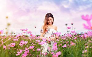 Картинка Азиатка Луга Космея Платья Улыбка Боке молодые женщины Цветы