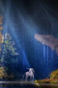 Фото Леса Единороги Лучи света Дерево Ночные Фантастика