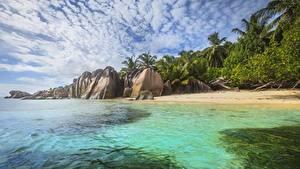 Фотографии Таиланд Остров Тропики Камни Побережье Пальмы Phuket