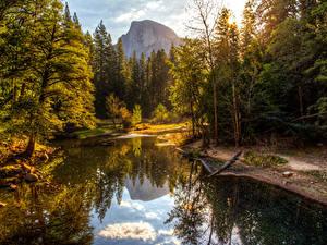 Картинки США Парки Осенние Гора Лес Озеро Йосемити Дерево Природа