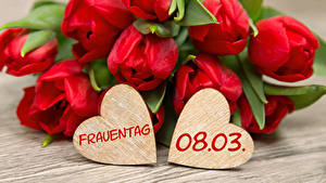 Картинка Международный женский день Тюльпаны Доски Немецкий Красный Сердечко Цветы