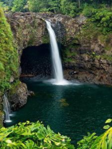 Фотография Парк Водопады Гавайские острова Wailuku River State Park Hilo