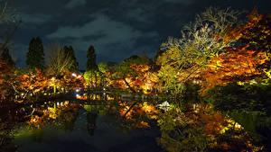 Картинки Япония Парки Пруд Отражается Деревьев Ночью Osaka Природа