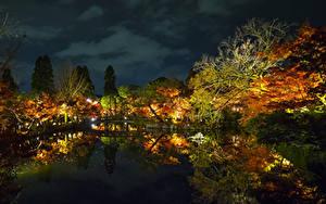 Картинки Япония Парки Пруд Отражение Деревья Ночные Osaka Природа
