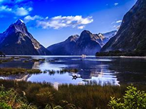 Фотография Горы Новая Зеландия Скалы Траве Fiordland national Park, Milford Sound, Mitre Peak, fjord