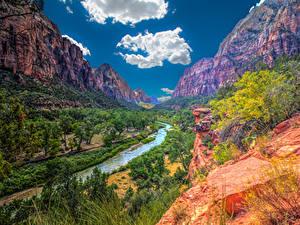 Фотография Зайон национальнай парк США Парки Горы Реки Деревьев Облачно Природа