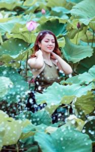 Картинки Азиатки Лотос Шатенка Листья молодые женщины