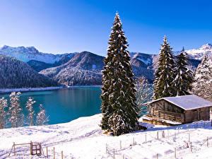 Картинки Италия Озеро Горы Зима Здания Снегу Ели Lago di Sauris Природа
