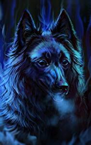 Фотография Собаки Рисованные Ночные Голова Смотрит Овчарка Groenendael Животные