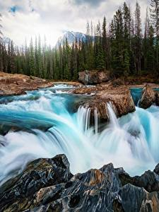 Фотографии Водопады Реки Пейзаж Канада Камни Леса