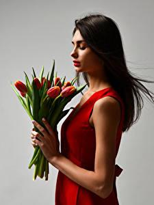 Обои Букеты Тюльпаны Серый фон Шатенка Руки Девушки