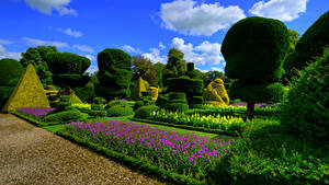 Фото Англия Сады Дизайна Кусты Газоне Topiary Gardens Levens Hall Природа