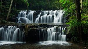 Фотографии Таиланд Парк Водопады Лес Скала Sam lan waterfall Природа