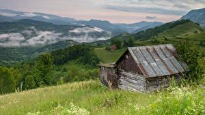 Картинки Румыния Горы Лес Траве Sub Piatra Alba Природа
