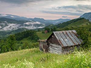 Картинки Румыния Горы Лес Траве Sub Piatra Alba