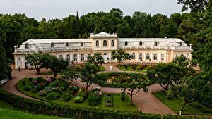 Фото Россия Парки Дворца Газоне Дерева House in down park Peterhof город