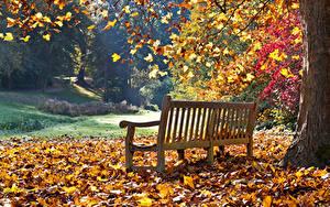 Картинки Осень Парки Скамья Листья Природа