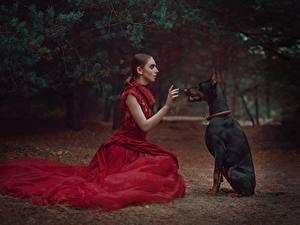 Картинка Собаки Сидит Доберманы Платье Anastasia Dobrovolskaya девушка Животные