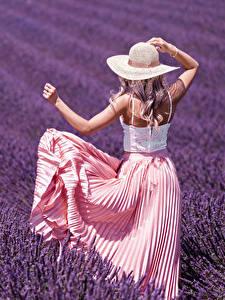 Фотография Поля Лаванда Блондинки Шляпы Вид сзади Рука Платья девушка