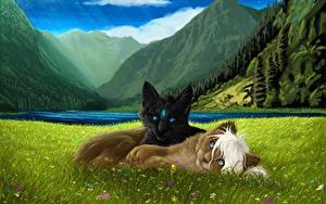 Картинки Рисованные Коты 2 Траве животное