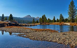 Фотографии США Парки Лес Озеро Йосемити