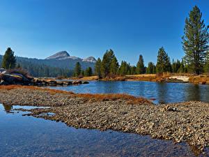 Фотографии Штаты Парки Леса Озеро Йосемити