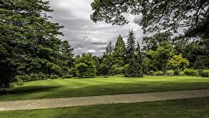 Картинки Великобритания Парк Газоне Деревья Ветвь Garden Harlow Carr Природа