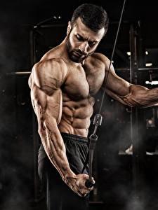 Картинка Фитнес Мужчины Бодибилдинг Физическое упражнение Рука Живота Мышцы Спорт