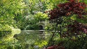 Картинка Германия Парки Пруд Мосты Деревья Кусты Duisburg Природа