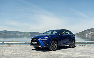 Фото Лексус Синий 2017-18 NX 300 F SPORT Worldwide Авто