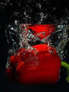 Фото Перец Вода Красные На черном фоне Еда