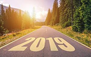 Фотографии Новый год Дороги Леса 2019 Асфальт