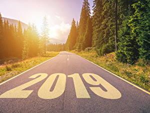 Фотографии Новый год Дороги Леса 2019 Асфальт Природа