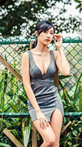 Фотография Азиатка Платье Декольте Забором Взгляд молодая женщина