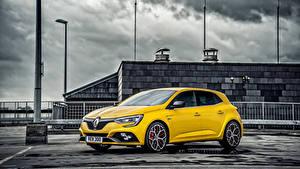 Картинка Renault Желтый 2019 Mégane R.S. 300 Trophy