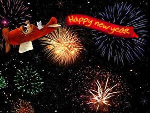 Фотографии Новый год Салют Самолеты Коты Английский