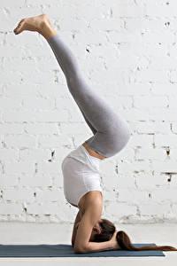 Картинки Фитнес Гимнастика Стена Тренировка Ноги Шатенка Девушки Спорт