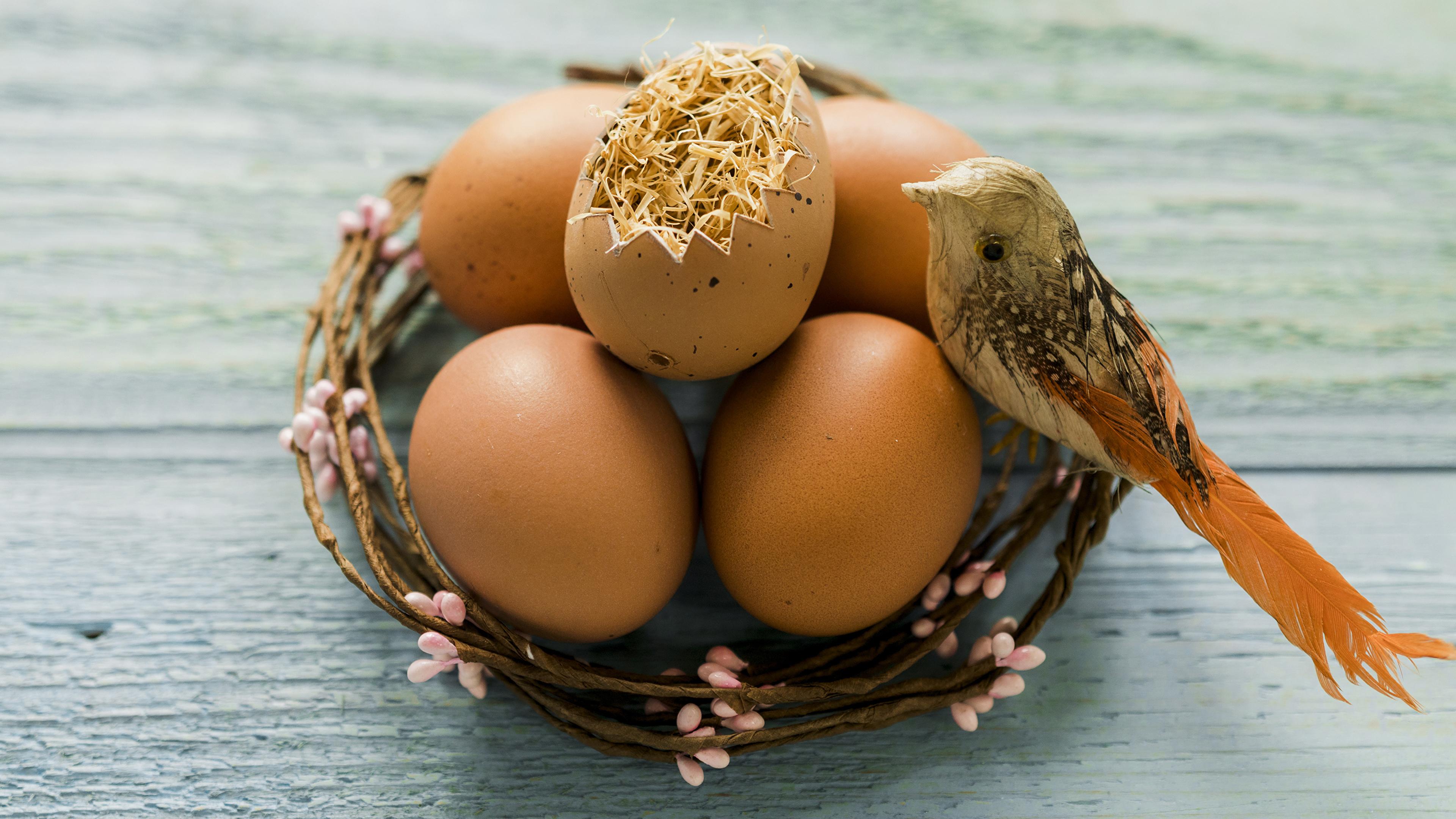 Фото Пасха Птицы яйцами гнезда Праздники Доски 3840x2160 птица яиц яйцо Яйца Гнездо гнезде