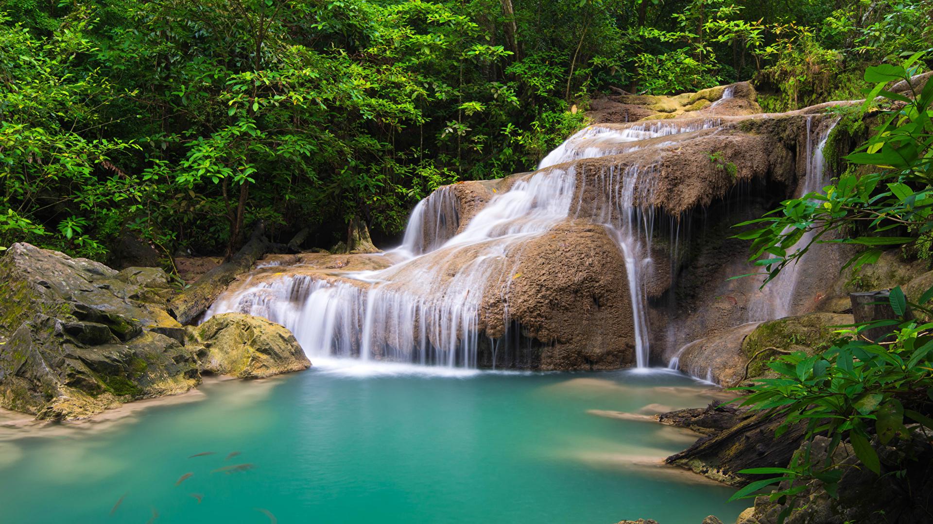 Картинка Таиланд Скала Природа Водопады Парки Тропики дерева 1920x1080 Утес скалы скале парк тропический дерево Деревья деревьев