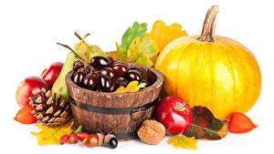 Обои Осенние Тыква Виноград Яблоки Орехи Белый фон Шишки Листва