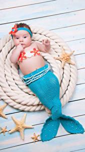 Картинки Русалки Морские звезды Доски Младенец Униформе Хвост