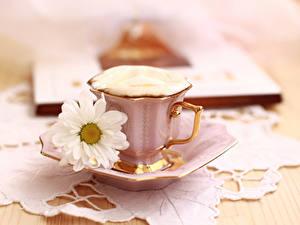Картинка Кофе Капучино Ромашки Чашка Еда